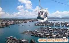 南湾猴岛自然保护区-过海缆车