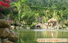 呀诺达雨林文化旅游区美景