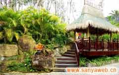 呀诺达雨林文化旅游区-一角
