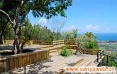 亚龙湾热带天堂森林公园-美景2