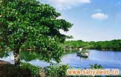 东寨港红树林自然保护区-一角